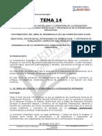 TEMA 14  NEREA OK.doc