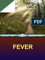 slides of fever 3.ppt
