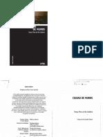 167105877-Pires-Do-Rio-Caldeira-Teresa-Ciudad-de-Muros-1.pdf