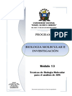 MODULO 13