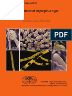 WöSten, Han; Dijksterhuis, Jan Development of Aspergillus Niger