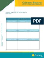 ANEXO 9. Modelo Ficha Indicador (1)