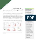 DS QlikView for Cashflow and Balance Sheet Management en (1)