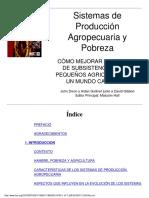 1 Ar Agr-Sistemas Produccion Agropecuaria y Pobreza (1)