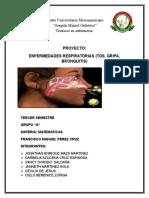 "Proyecto Matematico ""enfermedades respiratorias"""