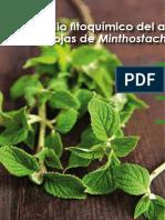 Estudio Fitoquimico Del Aceite Esencial de Las Hojas de Minthostachys Mollis (Muña)