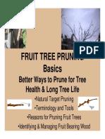 Fruit Tree Pruning Basics.pdf