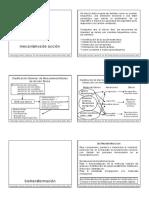 lipidos_electrofilos_y_toxicologia_mecanismos_de_accion.pdf