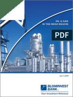 Oil-Gas-Industry-in-the-MENA-Region-2009.pdf