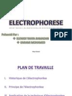 Electrophorèse des protiène