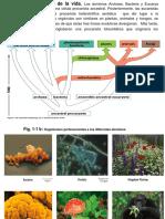 Tema 1.Fundamentos de La Biología Celular