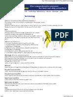 Propeller & Propulsion Terminology