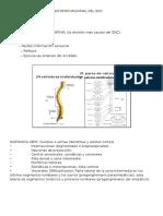 Tema 2. Organizacion Organofuncional Del Sistema Nervioso