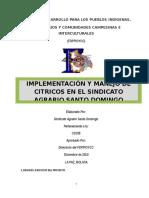 Implementación y Manejo de Citricos en El Sindicato Agrario Santo Domingo