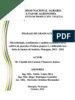 Analisis Economico en El Cultivo de Guayaba