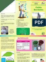 Brochure caldo bordeles.pdf