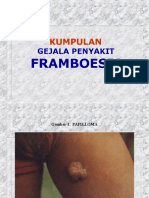 Gmbr framboes