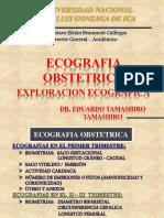 Planos de Corte Obstetrico 2015