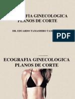 Planos de Corte Ginecologico.pdf