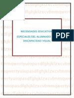 NECESIDADES EDUCATICAS ESPECIALES