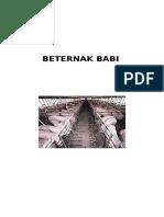 Beternak Babi