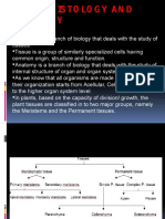 Plant Histology and Anatomy