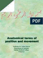 Anatomical Terms 2016