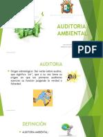 AUDITORIA-AMBIENTAL-resumen
