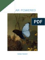 SP_Eng.pdf