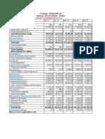 Financial Analysis Amtek Auto.xlsx