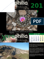 Xerophilia Calendar 2017 - 1