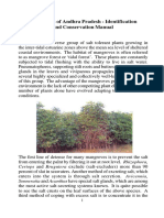 Mangroves Conservation Manual