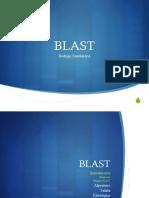 4_BLAST