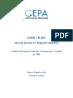 Informe Sobre Fuga de Capitales. Cepa. Magdalena Rua (1)