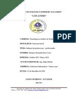 Informe de Prácticas Pre Profesionales Completo