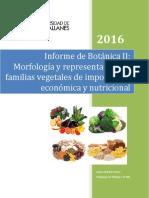 Informe de Botanica