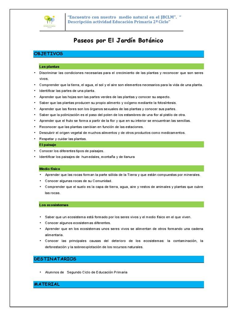 Asombroso Hojas Ciclo De Las Rocas Inspiración - hojas de trabajo ...