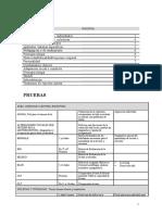28671160-Listado-de-pruebas-por-areas-a-evaluar.pdf