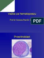Vežba Za Hematopoezu