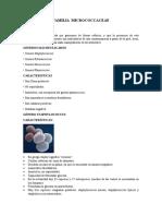 Familia Micrococcaceae