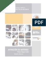 Afinación de Motores Fuell Injection - Módulo Técnico