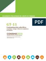 GT-11 Doc Preliminar