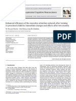 Enhanced Efficiency of the Executive Attention Network After Training