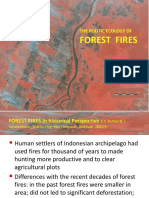 6 Forest Fires Indonesia