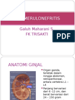 80356828-Glomerulonefritis-Ppt
