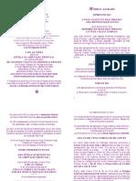 Modelo Sagrado Espírito de 2014 o Fogo Violeta e o Raio Feminino Uma Sincroncidade Divina!