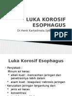 Luka Korosif Esophagus