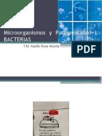 02a Microorganismos y Patogenicidad I Bacterias 2017