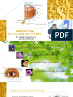 ANATOMY OF THE EYE (organ of vision) by Dr Omeje Emmanuel