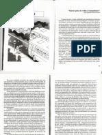 4-IDOSOS.pdf